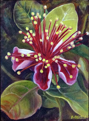 Painting - Pineapple Guava Flower by Barbara Oertli