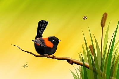 Digital Art - Red Backed Fairy Wren by John Wills
