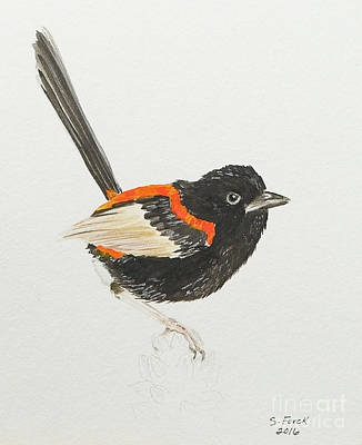 Painting - Red-backed Fairywren by Stefanie Forck