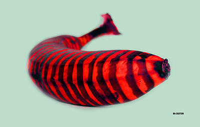 Photograph - Red Banana  by Mr CAUTION