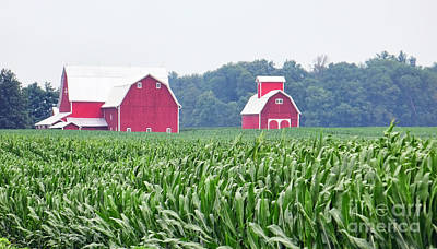 Red Barn And Cornfield  8707 Art Print by Jack Schultz