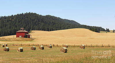 Photograph - Red Barn And Hay Bales  3616 by Jack Schultz