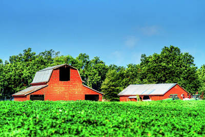 Photograph - Red Barn And Shed by Barry Jones