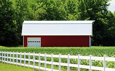 Photograph - Red Barn And White Fence by Cynthia Guinn