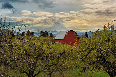 Photograph - Red Barn At Pear Orchard by David Gn