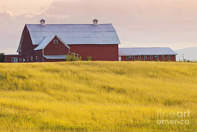 Photograph - Red Barn At Sunset by Alan L Graham