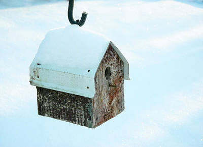 Photograph - Red Barn Birdhouse In The Snow by Douglas Barnett