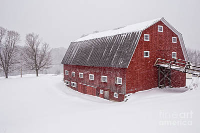 Photograph - Red Barn Blizzard New Hampshire by Edward Fielding