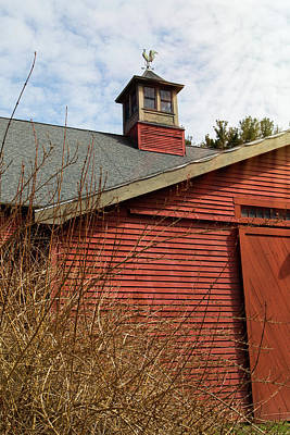 Photograph - Red Barn Blue Sky by Natalie Rotman Cote