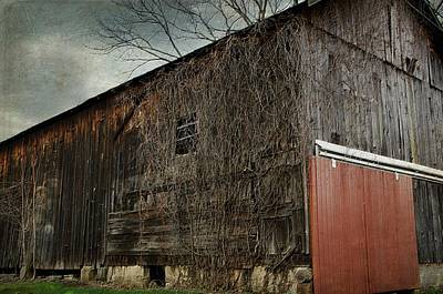 Photograph - Red Barn Doors by Stephanie Calhoun