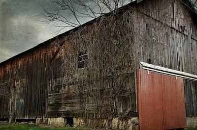 Photograph - Red Barn Doors by Stephanie Calhoun