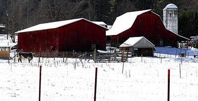 Photograph - Red Barn Farm by Carol Montoya