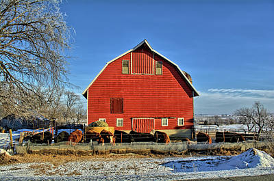 Photograph - Red Barn Feeding 2 by Bonfire Photography