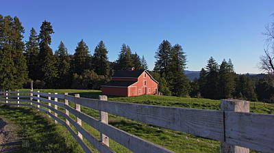 Photograph - Red Barn by Geoffrey C Lewis