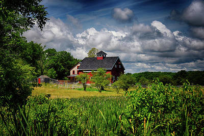 Photograph - Red Barn Hill by Tricia Marchlik