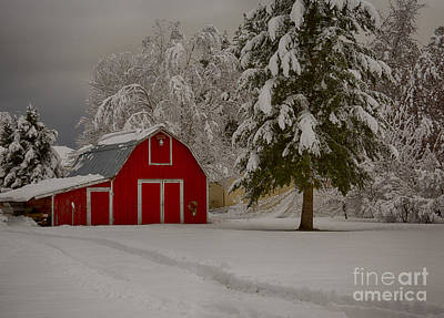 Photograph - Red Barn In Snow by Idaho Scenic Images Linda Lantzy