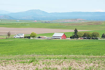 Photograph - Red Barn In The Klickitat by Tom Cochran