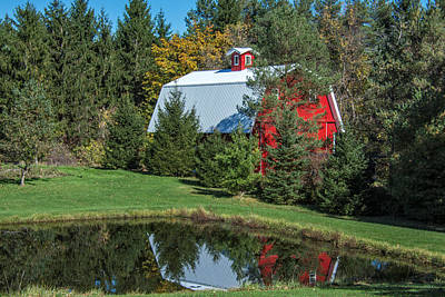 Photograph - Red Barn In The Trees by Guy Whiteley