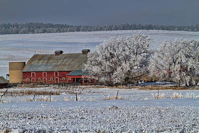 Photograph - Red Barn In Winter by Alana Thrower