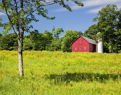 Photograph - Red Barn In Yellow Goldenrod Field by Betty Denise