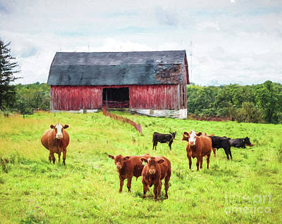 Photograph - Red Barn by Lori Dobbs