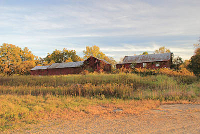 Photograph - Red Barn On A Fall Day by Angela Murdock