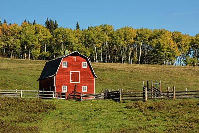 Photograph - Red Barn On The Hill by Celine Pollard