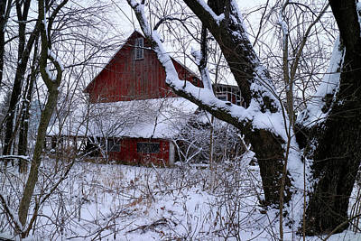 Photograph - Red Barn Through The Trees by Scott Kingery