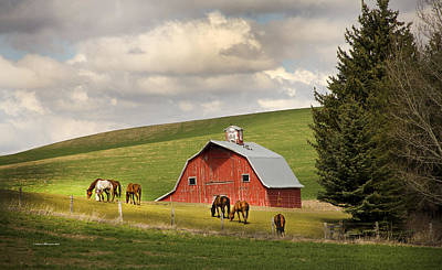 Red Barn With Horses In Washington Original by Sam Sherman