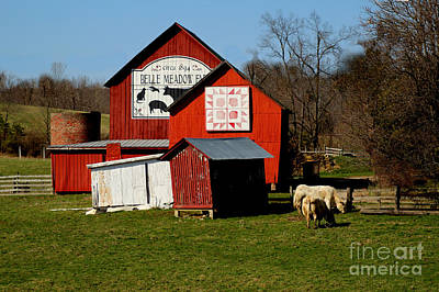 Photograph - Red Barns by Scott B Bennett