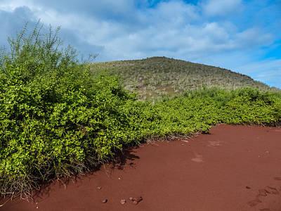 Photograph - Red Beach On Rabida Island by Harry Strharsky