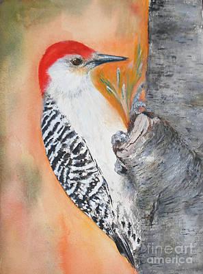 Red Bellied Male Woodpecker Art Print by Sibby S