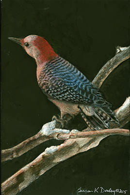 Painting - Red-bellied Woodpecker At Dawn by Susan Donley