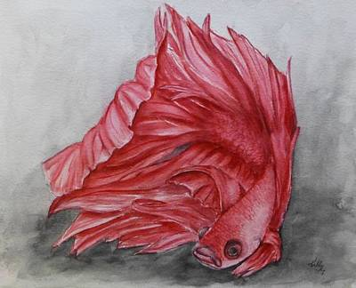 Painting - Red Beta Siamese Fighting Fish by Kelly Mills