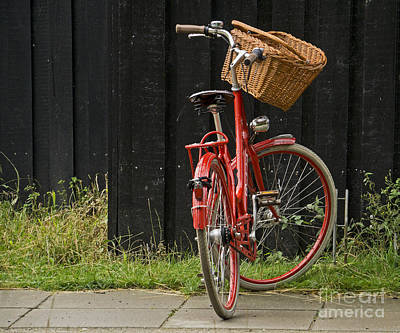 Photograph - Red Bike by Inge Riis McDonald