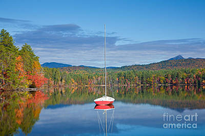 Photograph - Red Boat At White Lake by Susan Cole Kelly