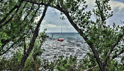 Photograph - Red Boat In Mangrove by Ginger Wakem