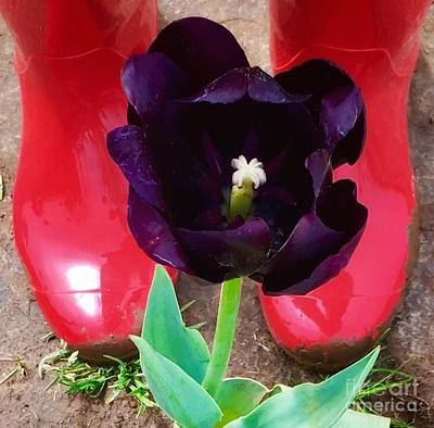 Photograph - Red Boots And Tulip by Susan Garren