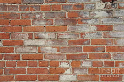 Photograph - Red Brick Wall by David Arment