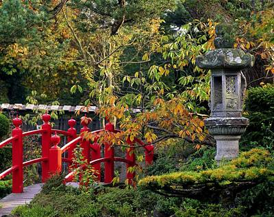 Photograph - Red Bridge & Japanese Lantern, Autumn by The Irish Image Collection