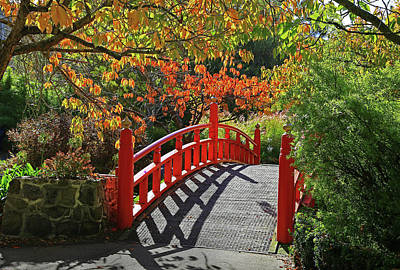 Photograph - Red Bridge With Shadows by Nareeta Martin