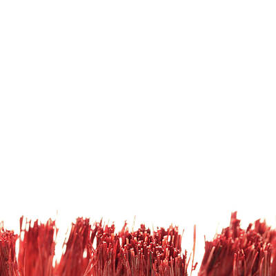 Photograph - Red Brush by Stephen Dorsett