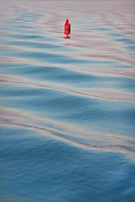 Photograph - Red Buoy by Joann Vitali