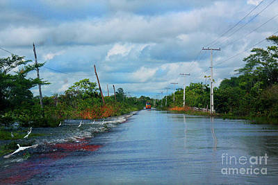 Photograph - Red Bus In The Amazon Flood by Nareeta Martin