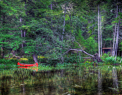 Red Canoe Among The Reeds Art Print by David Patterson