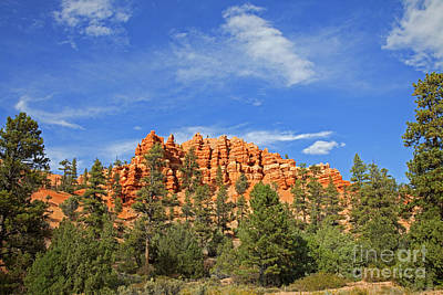 Photograph - Red Canyon Hoodoo Ridge Dixie National Forest by John Stephens