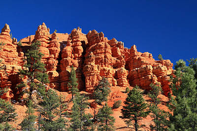 Photograph - Red Canyon In Utah by Pierre Leclerc Photography