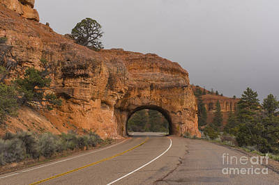 Photograph - Red Canyon To Bryce by Louise Magno
