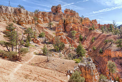 Photograph - Red Canyon Trail by John M Bailey