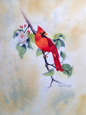Painting - Red Cardinal  by Hilda Vandergriff